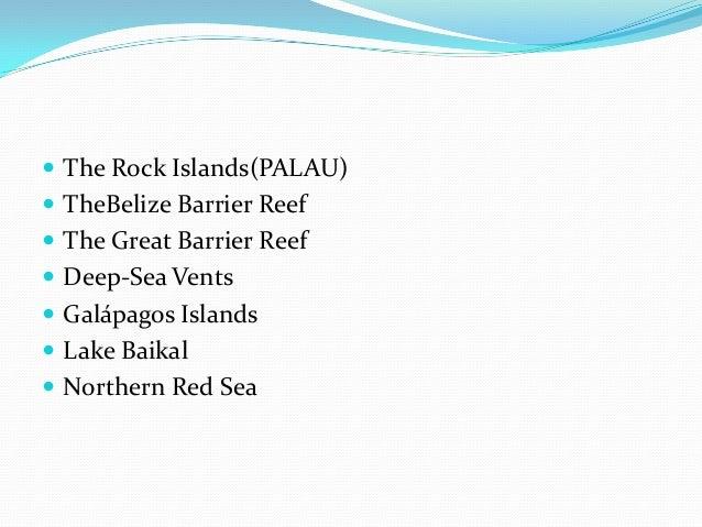 Seven wonders of the underwater world Slide 2