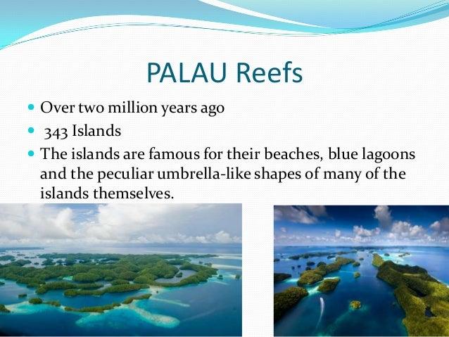 Seven wonders of the underwater world Slide 3