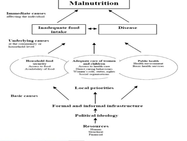 Community-Based Management of Acute Malnutrition: Technical Guidance Brief