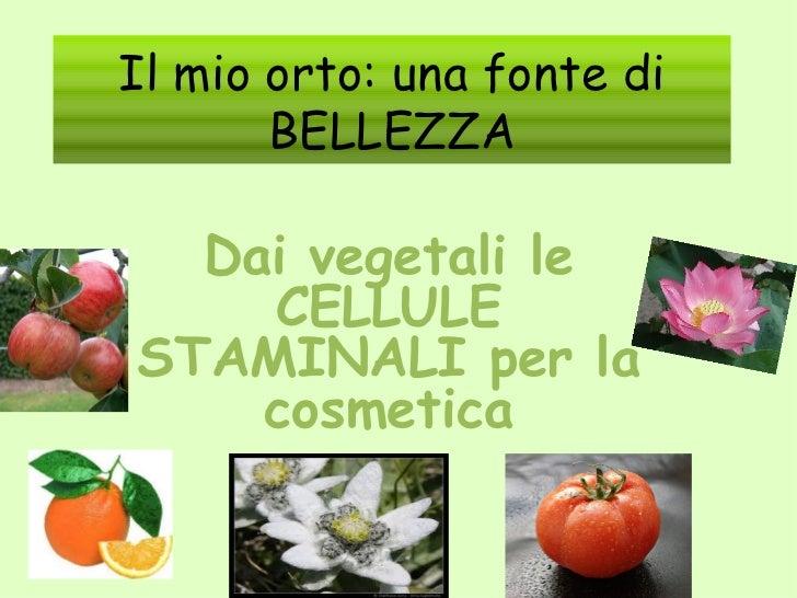 Il mio orto: una fonte di       BELLEZZA  Dai vegetali le    CELLULESTAMINALI per la    cosmetica