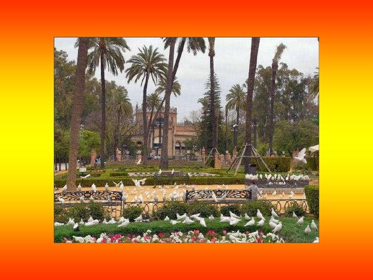 ARCHIVO DE LAS INDIAS: El Archivo General de Indias se creó en 1785 por deseo del    rey Carlos III, con el objetivo de ce...