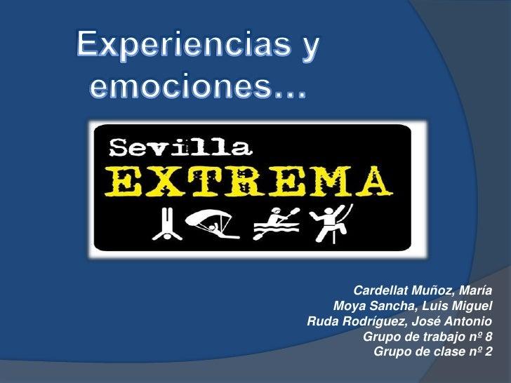 Cardellat Muñoz, María   Moya Sancha, Luis MiguelRuda Rodríguez, José Antonio       Grupo de trabajo nº 8         Grupo de...