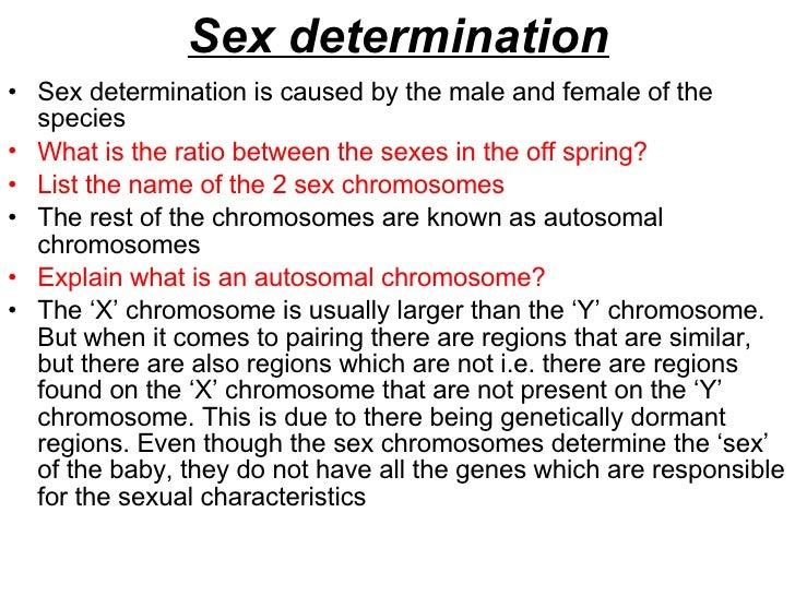 Baby Sex Determination 82