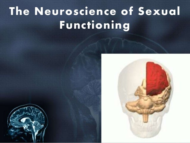 Brain damage sexuality