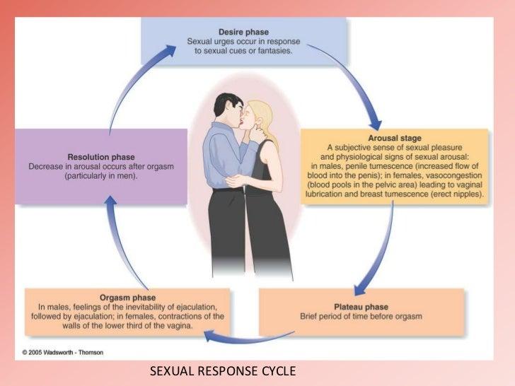Signs of arousal in men