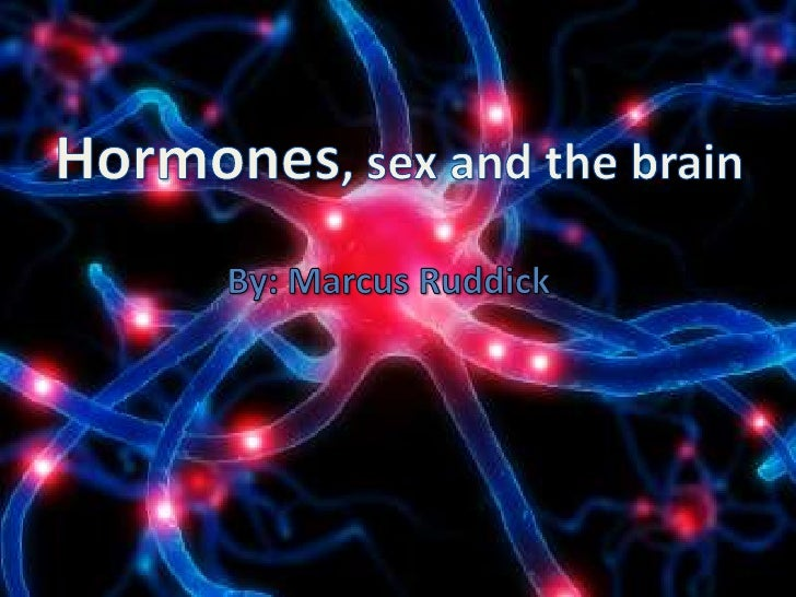 Hormones and the brain<br />By Marcus Ruddick<br />Hormones, sex and the brain<br />By: Marcus Ruddick<br />