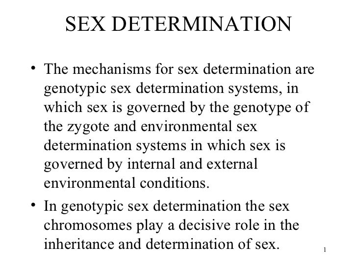 SEX DETERMINATION <ul><li>The mechanisms for sex determination are genotypic sex determination systems, in which sex is go...