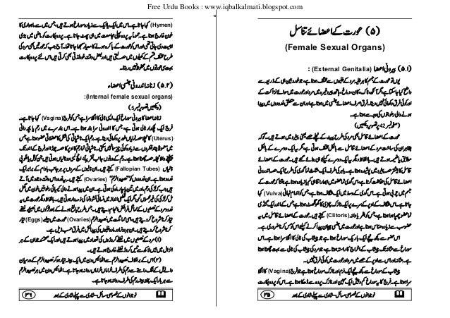 Male sexuality vs female sexuality in urdu