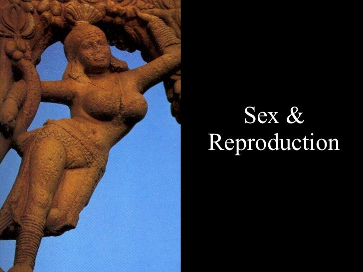 Sex & Reproduction