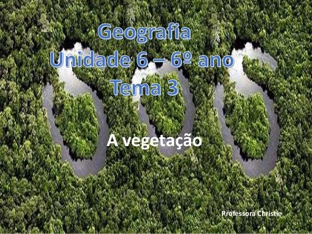 A vegetação Professora Christie