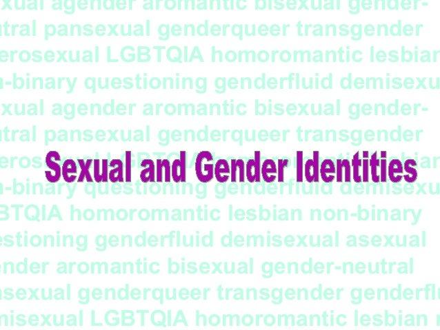 Define homoromantic pansexual