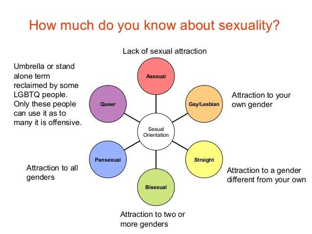 Sexuality or sex and lesson