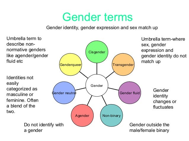 Relationship between gender identity and sexuality