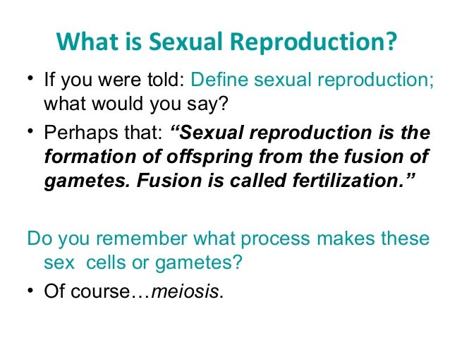 Sexual reproductive meaning