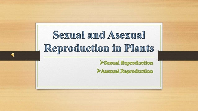 Asexual reproduction crops in california