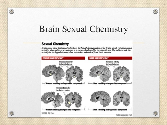Human sexual differentiation ppt