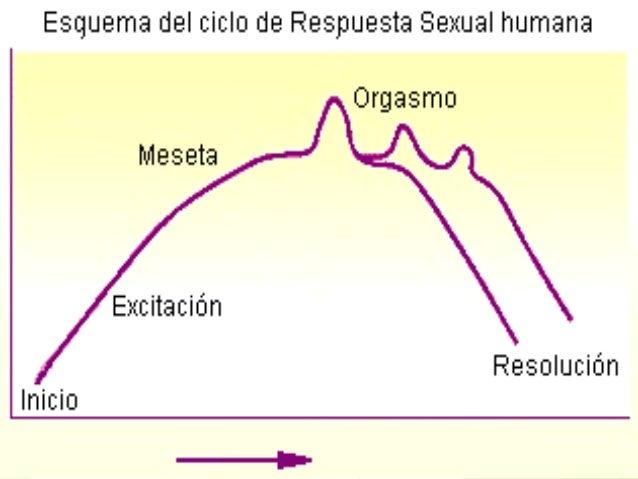 1. DISFUNCIONES SEXUALES 2.T. EXCITACIÓN SEXUAL 3.T. ORGASMO4.T. DOLOR 1.TRANSTORNOS DESEO SEXUAL