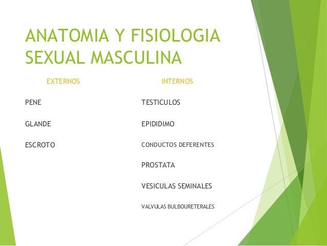 RESPONSABLES EDUCACION SEXUAL 1. HOGAR (padres): edades tempranas y etapa escolar. FORMAS DE REALIZARSE a. Activa y Positi...
