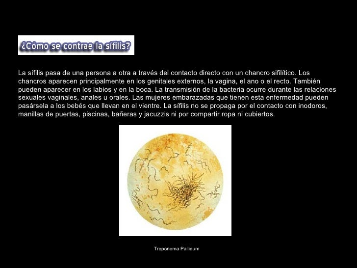 Los afrodisíacos se dividen en varias categorías: Por asociación sensual Desde la antigüedad plantas y alimentos cuya for...