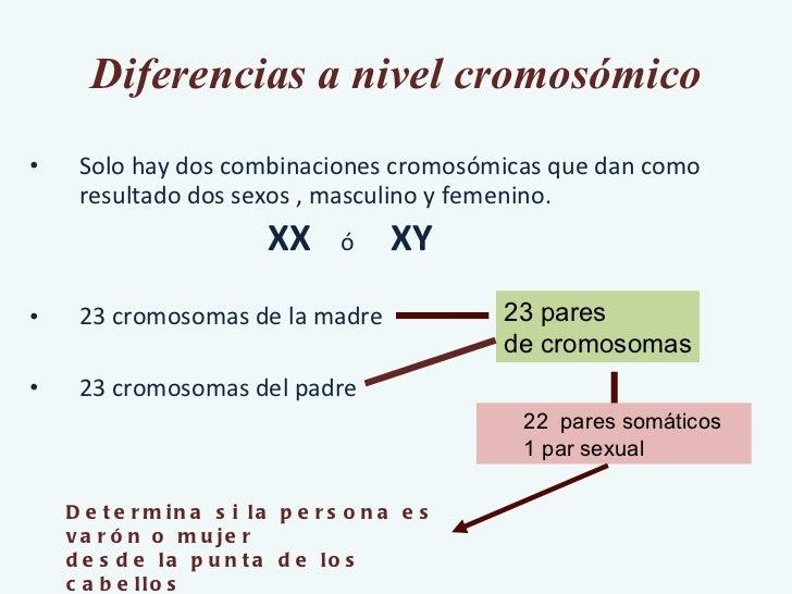 Diferencias a nivel cromosómico <ul><li>Solo hay dos combinaciones cromosómicas que dan como resultado dos sexos , masculi...