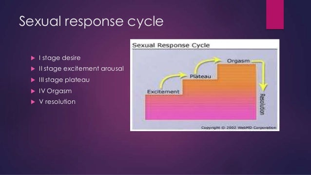 Sexual response cycle   I stage desire    II stage excitement arousal    III stage plateau    IV Orgasm    V resoluti...