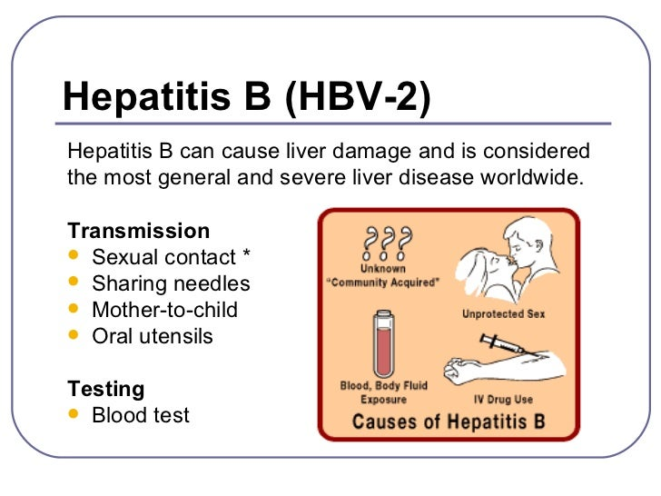 an analysis of the characteristics of the hepatitis b disease Study on the pharmacokinetic characteristics of iv hepabig injection used for prevention of hepatitis b relapse to hbv related disease and will be treated.