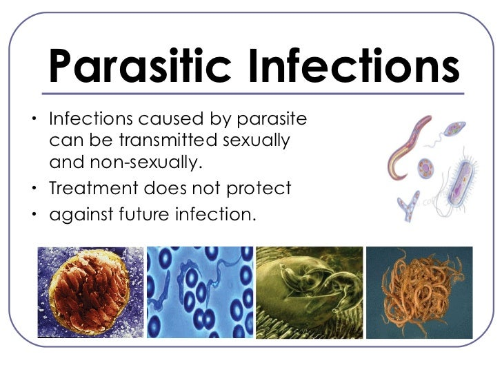 Sexually transmitted diseases caused by parasites