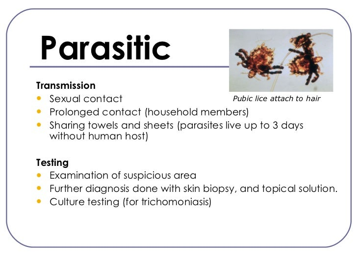 Sexually transmitted infections parasites