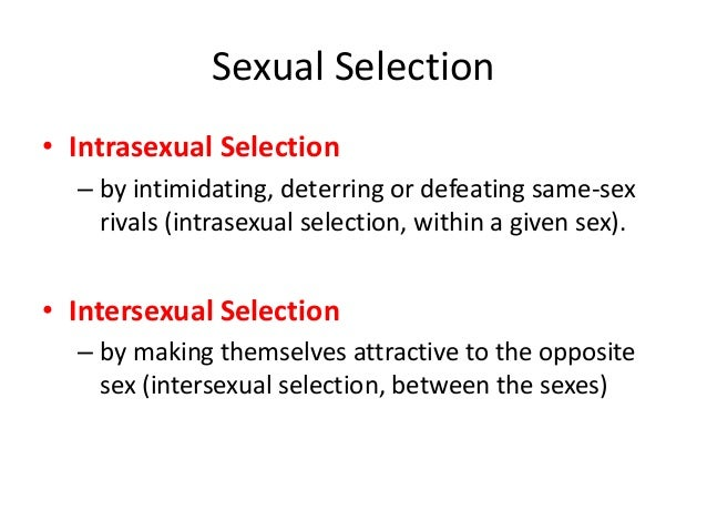 Inter-sexual and intra-sexual selection