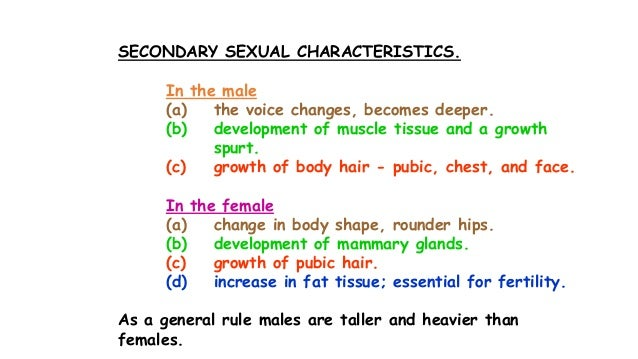 Secondary sex characteristics in males picture 994