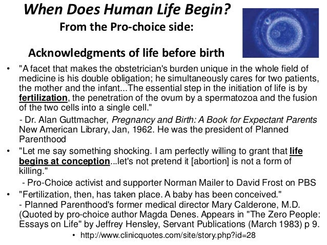 When does life begin pro-life essay