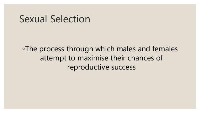 Power point presentation on sexual dimorphism