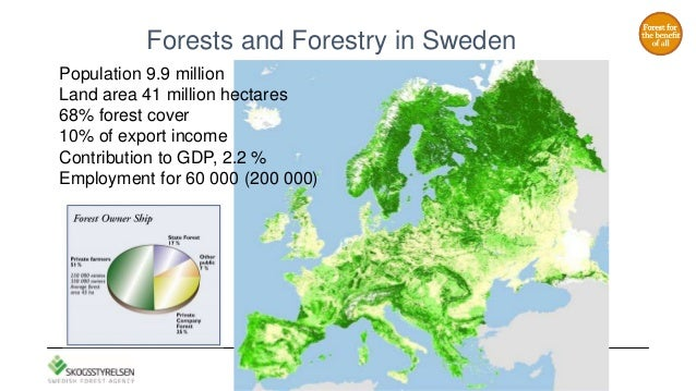 The Role Of The Swedish Forest Agency - Sweden vegetation map