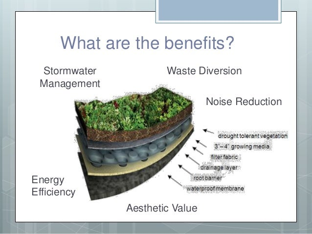 Mizzou Green Roof Grant Presentation