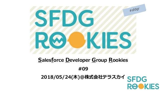 Salesforce Developer Group Rookies #09 2018/05/24(木)@株式会社テラスカイ