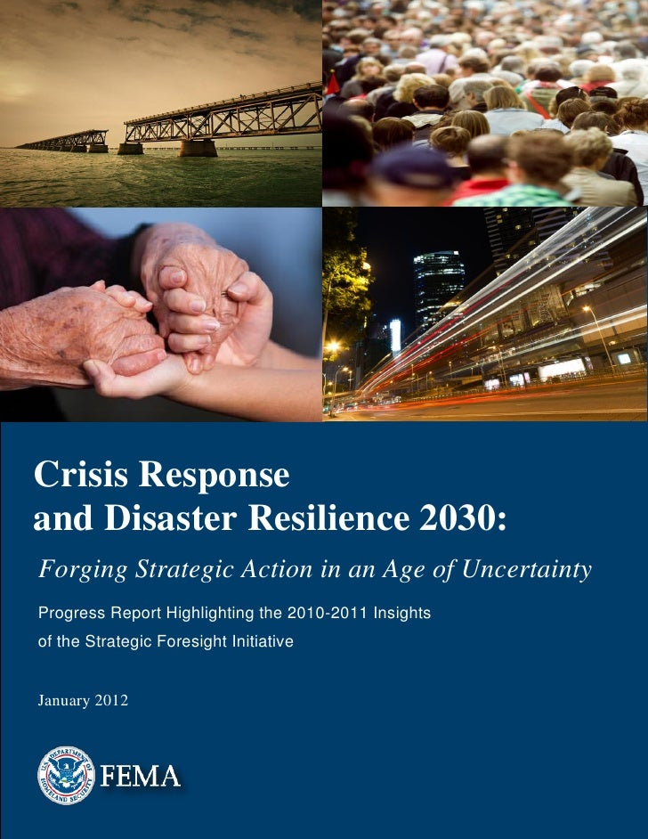 Crisis Responseand Disaster Resilience 2030:Forging Strategic Action in an Age of UncertaintyProgress Report Highlighting ...