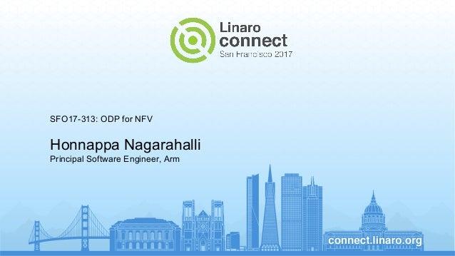 SFO17-313: ODP for NFV Honnappa Nagarahalli Principal Software Engineer, Arm