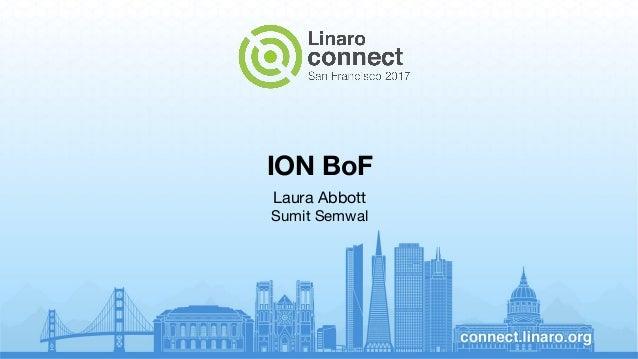 ION BoF Laura Abbott Sumit Semwal