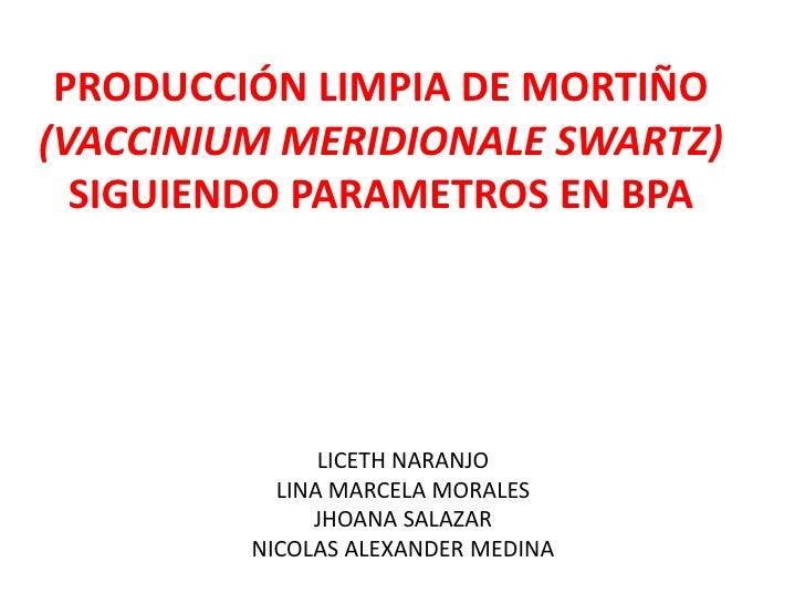 PRODUCCIÓN LIMPIA DE MORTIÑO(VACCINIUM MERIDIONALE SWARTZ) SIGUIENDO PARAMETROS EN BPA<br />LICETH NARANJO<br />LINA MARCE...