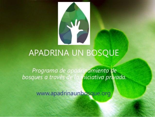 APADRINA UN BOSQUE   Programa de apadrinamiento debosques a través de la iniciativa privada.     www.apadrinaunbosque.org