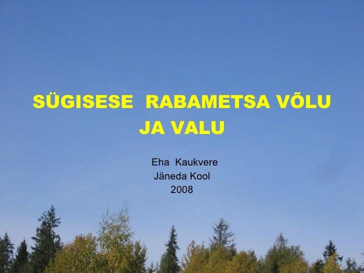 SÜGISESE  RABAMETSA VÕLU JA VALU Eha  Kaukvere Jäneda Kool 2008