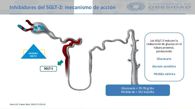 PPT iSGLT2 EN OBESIDAD Y DM2
