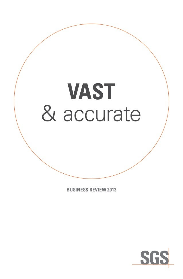 VAST & accurate  BUSINESS REVIEW 2013