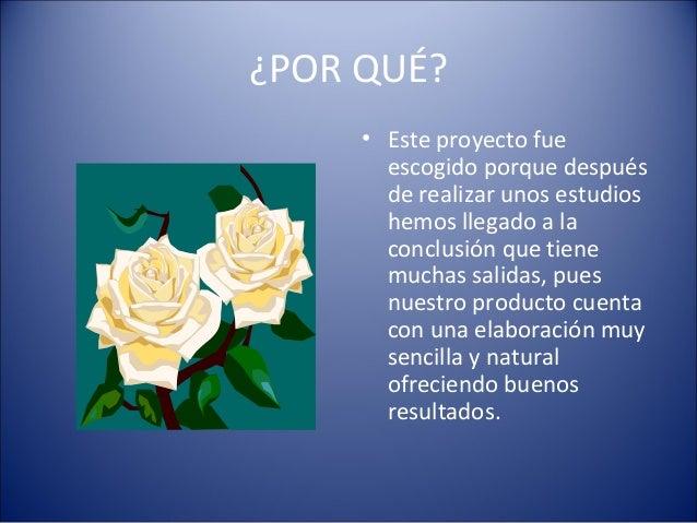 Proyecto Slide 3
