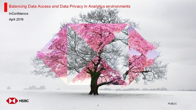 1 Balancing Data Access and Data Privacy in Analytics environments InConfidence April 2019 PUBLIC