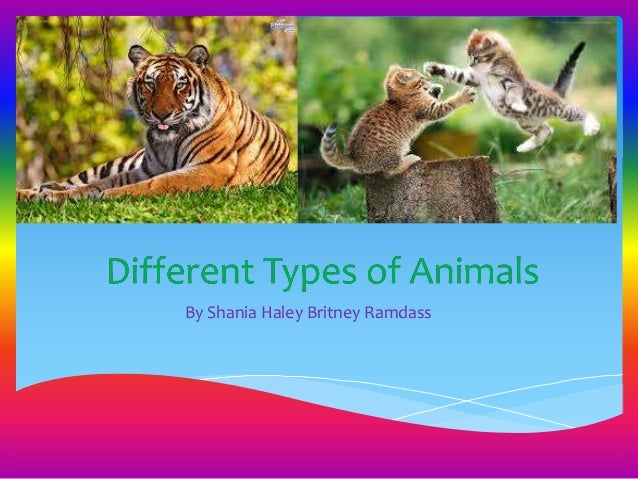 an analysis of different types of animal stories Genre characteristics • major types include chapter books, picture books  • realistic animal stories may be difficult to write.