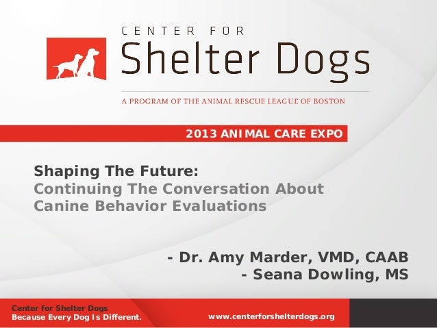 2013 ANIMAL CARE EXPO  Shaping The Future: Continuing The Conversation About Canine Behavior Evaluations - Dr. Amy Marder,...
