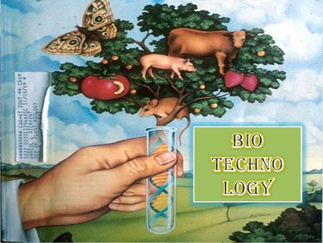 What is biotechnology? • Biotechnology = bios (life) + logos (study of or essence) – Literally 'the study of tools from li...