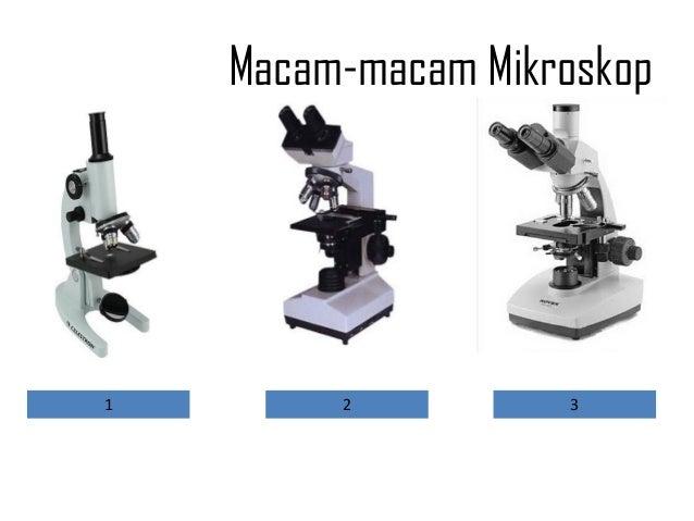 Laporan praktikum tentang mikroskop cahaya buku biologi materi