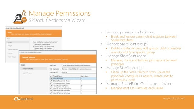sharepoint permissions management with spdockit